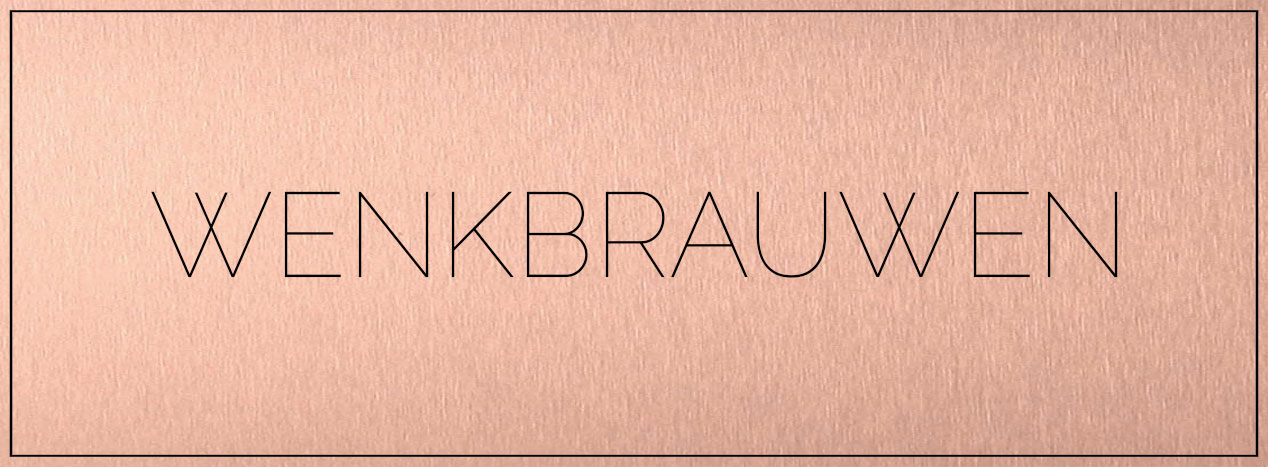Wenkbrauwen Ombre Brows Permanente Make Up bij Nadine Kerckhoffs in Maastricht Limburg Nederland